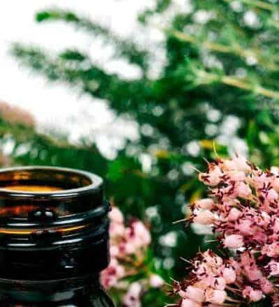 Atendimento Terapêutico | Café com Tarot
